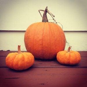 Hallowe'en Killjoy