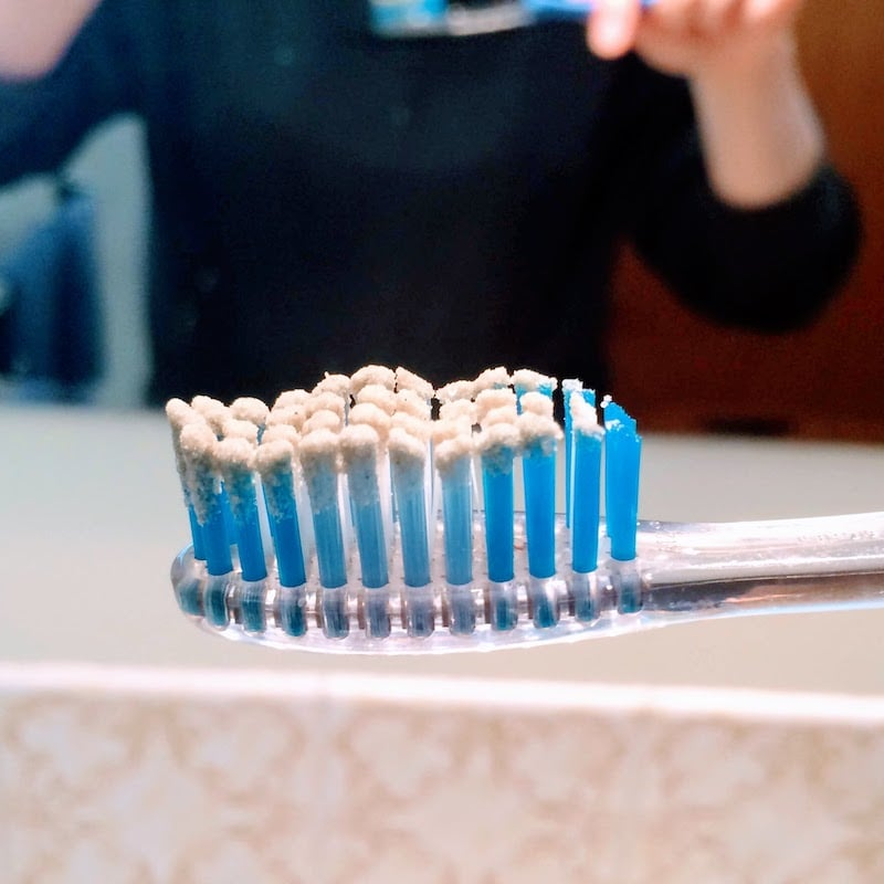 toothpowder on toothbrush
