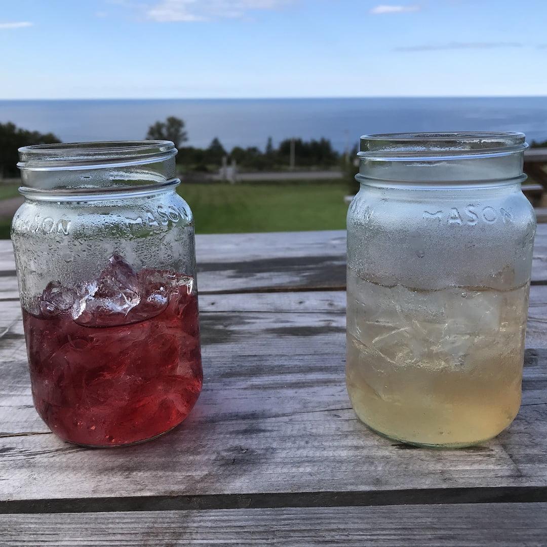steinhart gin cocktails